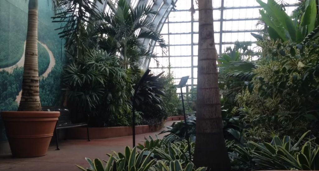 Things To Do In Garfield Park Conservatory Electrician Chicago Il 24 Hour Licensed Residential Mcc Electric